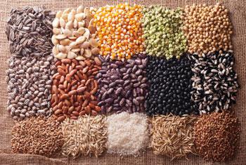 beans-corn-seeds