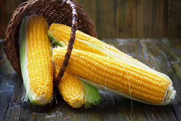 corn-drying-storage-resize